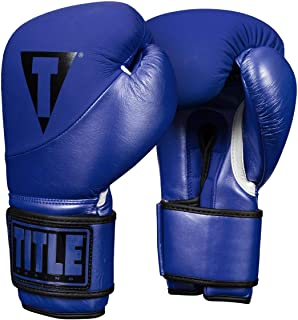 Title Boxing Cyclone Leather Bag Gloves