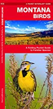 Montana Birds: A Folding Pocket Guide to Familiar Species (Wildlife and Nature Identification)