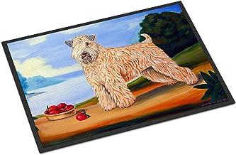 """Caroline's Treasures 7509MAT Wheaten Terrier Soft Coated Indoor Outdoor Doormat, 18"""" x 27"""", Multicolor"""