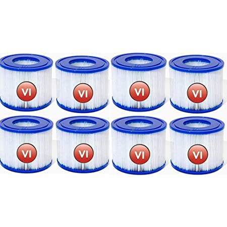 SSWD Lot de 8 cartouches filtrantes VI pour piscine Bestway VI, filtre de rechange pour cartouche filtrante Lay-Z-Spa Miami pour piscine gonflable