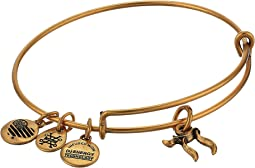 Alex and Ani - Chai Bangle