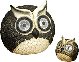 Best owl solar light next Reviews