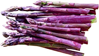 Best purple passion asparagus seeds Reviews