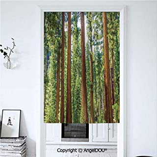 AngelDOU National Parks Home Decor Summer Automatic Closing Curtains Valances Up View of Tree Branches Spring Conifers Sequoia Art Prints Door Screen Partition Curtain 33.5x47.2 inches