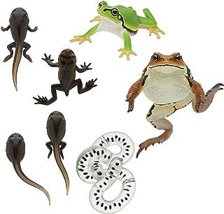 Best kitan club frog Reviews