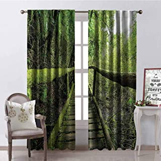 GloriaJohnson Rainforest Shading Insulated Curtain Rainforest in Inthanon Mountain Chiang Mai Thailand Romantic Honeymoon Theme Soundproof Shade W52 x L72 Inch Green Brown
