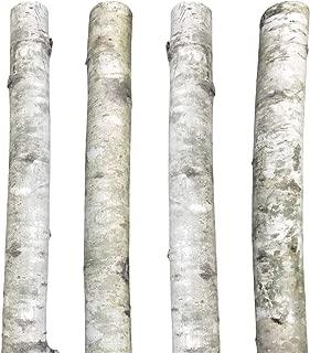 Decorative Silver Aspen Poles 8'