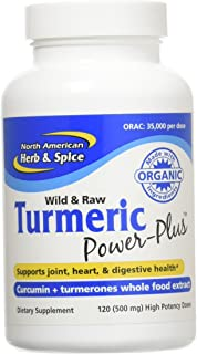 North American Herb & Spice Turmeric Power-Plus Gels, 120 Count