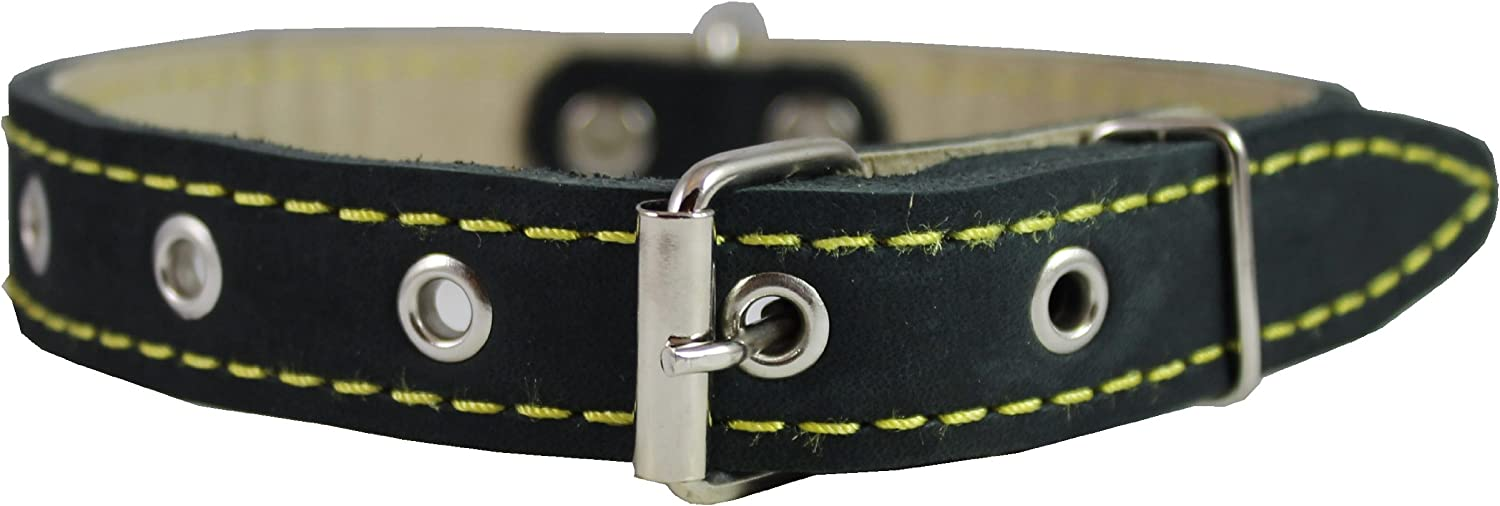Real Leather Dog Collar 11 15  Neck Size, 3 4  Wide, Medium Breeds