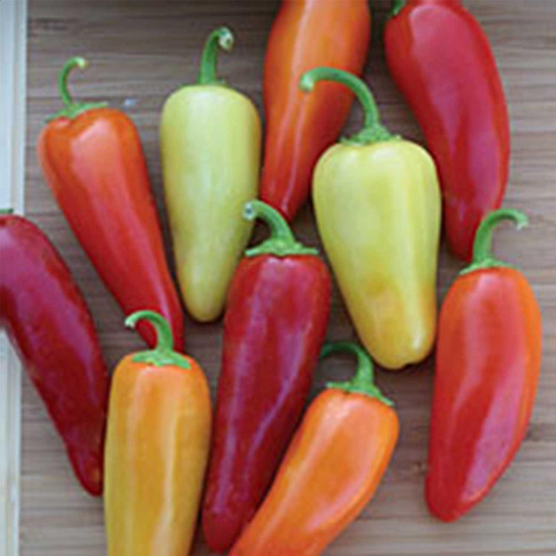 Santa Fe Grande Omaha Mall Hot Pepper Garden Non-GMO Lb 2021 model Seeds Heirlo 1 -