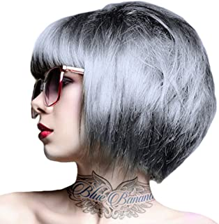 Renbow Crazy Color Semi-Permanent Hair Color Dye Silver 027 ? 100ml by Renbow