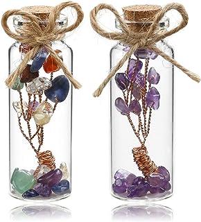 Sunligoo 2 Pcs Mini Chakra Healing Crystals Money Tree in Glass Wishing Bottles Tumbled Gemstone Reiki Wicca Stones Kit Birthday 1