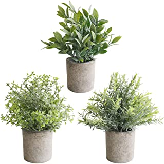 THE BLOOM TIMES Set of 3 Small Artificial Plants in Pots for Home Decor Indoor, Mini Fake Greenery Faux Potted Plants for ...