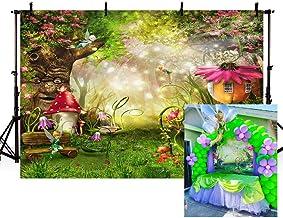 MEHOFOTO - Fondo de dibujos animados para decoración de fiesta de cumpleaños, diseño de hadas, para fotografía de 182,88 x 1,52 m