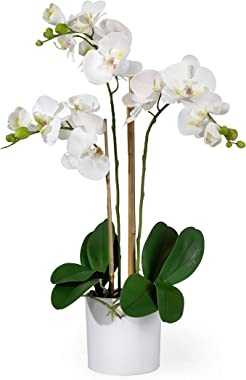 "Serene Spaces Living 3 White Realistic Phalaenopsis Orchids in Pot, Artificial Potted Flowers - Beautiful Entryway Vase, Foyer Table Décor, Measures 26"" Tall & 5"" Diameter"