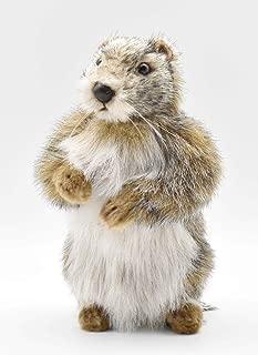 HANSA Baby Mamot Plush Animal Toy (Groundhog), 9