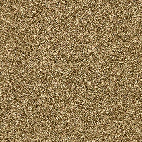 スペクトラムブランズジャパンTetra『ブラインシュリンプエッグス(20ml)』