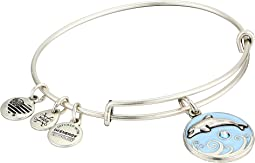 Color Infusion Dolphin III Bangle