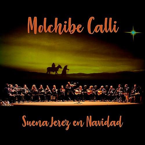 Suena Jerez en Navidad by Varios Artistas on Amazon Music ...