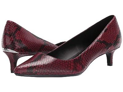 Calvin Klein Gabrianna Pump (Barn Red Two-Tone Snake) Women