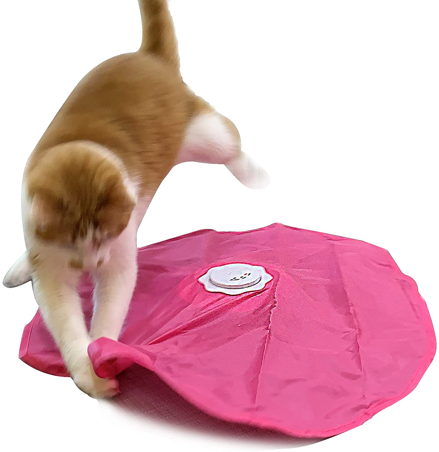 Wholesale Interactive Cat Play-Catch The Limited price Feather Tail-Electric Rotating
