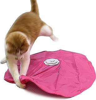 Blackhole Catch The Tail Cat Toy