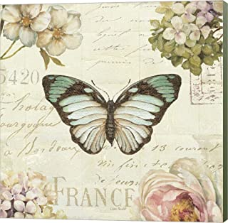 Marche de Fleurs Butterfly II by Lisa Audit Canvas Art Wall Picture, Museum Wrapped with Sage Green Sides, 14 x 14 inches