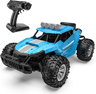 Tomzon Remote Control Car, 1/16 Scale High Speed Car, 2.4GHz Off Road Trucks with Shock Absorbers Anti-Slip Tires, 30 Minutes of Battery Life, RC Toy for Kids & Adults