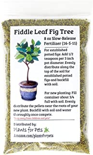 Fiddle Leaf Fig Tree Fertilizer (Slow-Release Pellets) Ficus Plant Food | Improves Leaves/Branches | Potted Indoor Trees Treatment by Plants for Pets