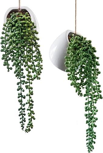 popular Royal Imports Artificial Senecio Plant, String new arrival of Pearls Decorative Ceramic Wall-Hanging Planters, Life-Like Rowleyanus Plants, Set of 2021 2 online