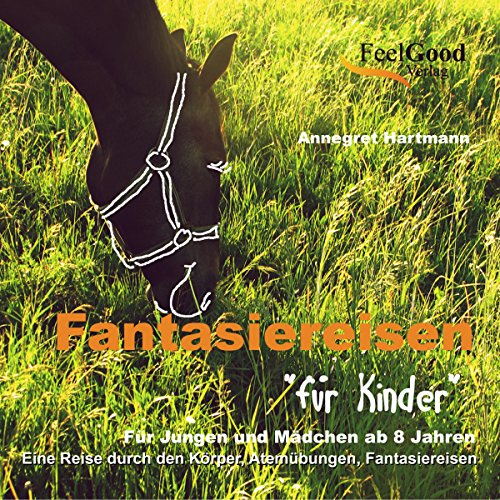 Fantasiereisen für Kinder audiobook cover art