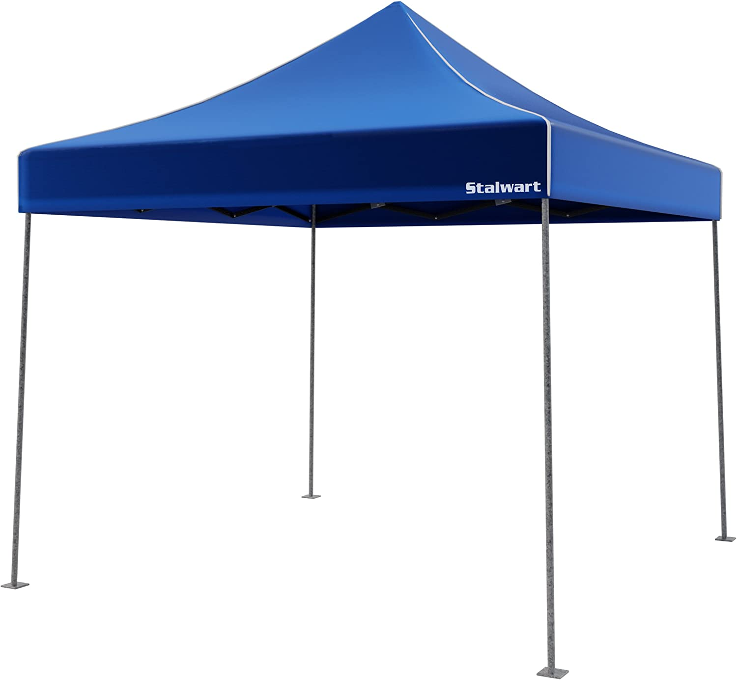 Canopy Tent Outdoor Party Shade Instant Up and Max 50% OFF Easy Ranking TOP4 Set Storage
