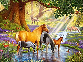 LoveTheFamily A Paradise for Horses Paint by Numbers Kits DIY Digital Painting Coloring On Canvas Oil Painting by Yourself Handmade (Frameless, 16x20-inch)
