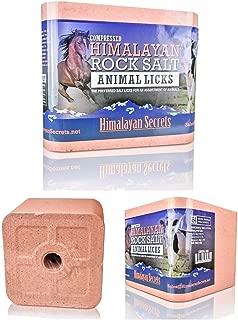 animal salt block