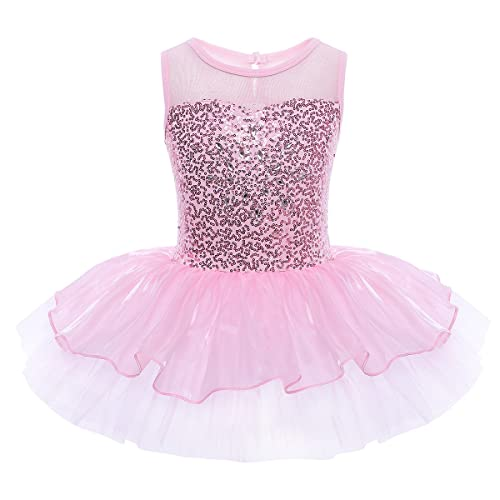 Children Kids Girls/' Ballet Dress Leotard with Skirt Dance Costumes Tutu Outfit