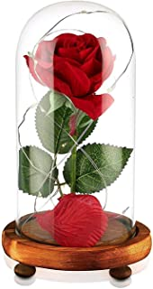 JUNNUO Beauty and The Beast Rose, Enchanted Red Silk Rose and LED Light with Fallen Petals in Glass Dome on a Wooden Base, Gift for Her - Holiday Birthday Party Wedding (Natural Wood)