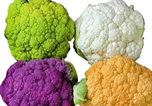 Please Read! This is A Mix!!! 50+ Cauliflower Mix Seeds Heirloom Non-GMO 4 Varieties Purple Green Yellow Delicious from USA