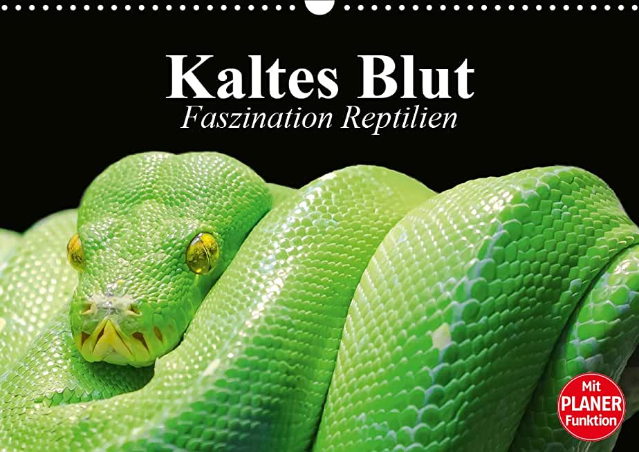 Kaltes Blut. Faszination Reptilien (Wandkalender 2021 DIN A3 quer)