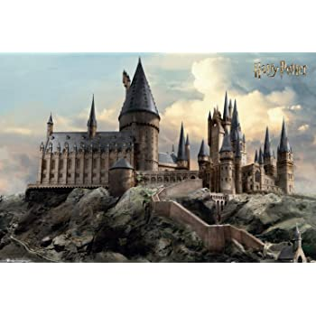 Starry Night Hogwarts Castle Harry and Owl Great Gift for Harry Potter Fans 11x14 Unframed Harry Potter Art Print