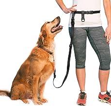 دسته قابل تنظیم سگ دست آزاد ، بند بزرگ کمر برای دویدن ، دویدن و آموزش سگ ساخت کشور آمریکا توسط The Buddy System