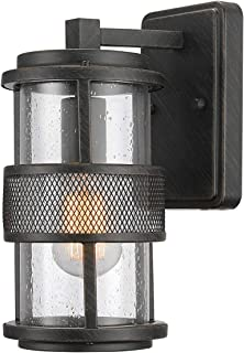 Globe Electric 44100 Bronson 1-Light Outdoor Indoor Wall Sconce, Dark Brushed Bronze, Clear Seeded Glass Shade, Mesh Accent