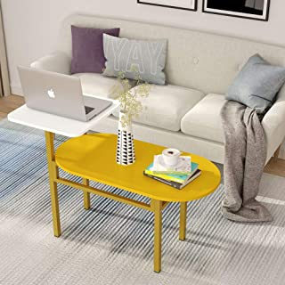 Tribesigns Modern Coffee Table with Gold Metal Frame, 2-Tier Cocktail Table Side Table End Tables for Living Room