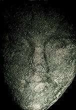 Zapomniane oblicza: Motyw twarzy na zabytkach archeologicznych z ziem polskich od IV tysiaclecia pne do XVII w. [Face Motif on Archaeological Artefacts from Poland, 4th Millennium BC to 17th Century]