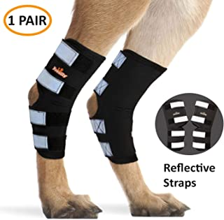 NeoAlly Pair Dog Rear Leg Brace Canine Rear Hock Joint Support with Safety Reflective Straps for Joint Injury and Sprain Protection, Wound Healing and Loss of Stability from Arthritis