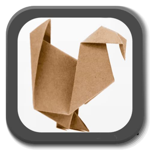 Origami - Papiroflexia