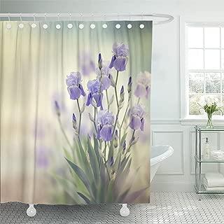 Best purple iris shower curtain Reviews