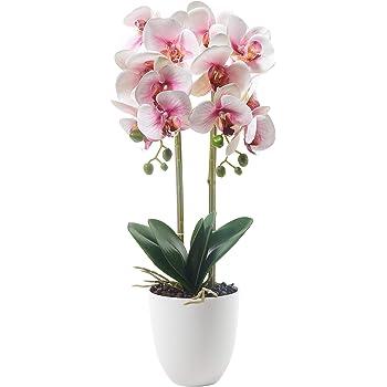 Alicemall Fleur Artificiel Orchid/ée D/écoration de la Maison Bureau D/écoration Florale 15x15x50 cm Violet