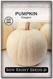 بذرهای مناسب بکارید - بذر کدو تنبل White Casper برای کاشت - بسته میراث غیر GMO همراه با دستورالعمل کاشت باغ سبزیجات خانگی