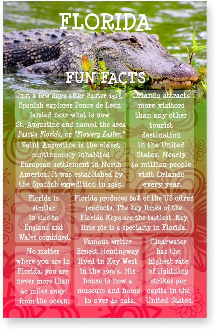 FLORIDA New Free Shipping FUN FACTS postcard set of Easy-to-use postcards. sta 20 identical US