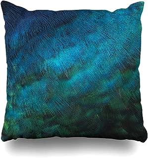 Best peacock blue decor Reviews